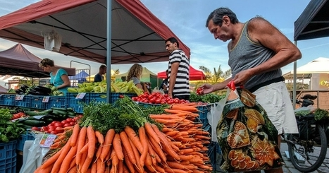 Reclaiming, Relocalizing, Reconnecting: The Power of Taking Back Local Food Systems | sustainablity | Scoop.it