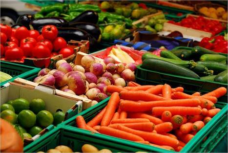 The freshest food is on the web | Local Food Systems | Scoop.it