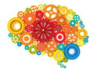 Mieux prendre en charge les accidents vasculaires cérébraux | Inria dans la presse en ligne | Scoop.it