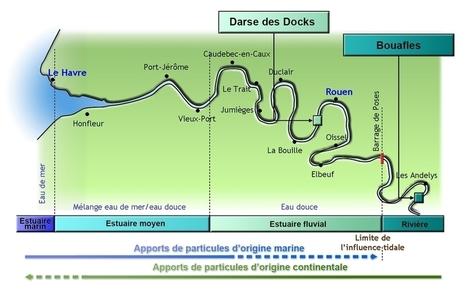 Attention ! trop boire la Seine peut noyer la mémoire, concentrations singulières en plutonium | Toxique, soyons vigilant ! | Scoop.it