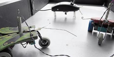 Elementos de computadores viejos para crear robots - eltiempo.com   Joaquin Lara Sierra   Scoop.it