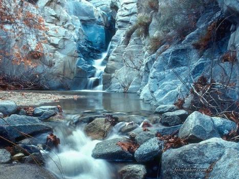 nature.gif | grammar | Scoop.it