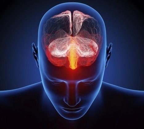 Alzheimer, la depressione arriva prima della perdita di memoria | Mondo Alzheimer | Scoop.it