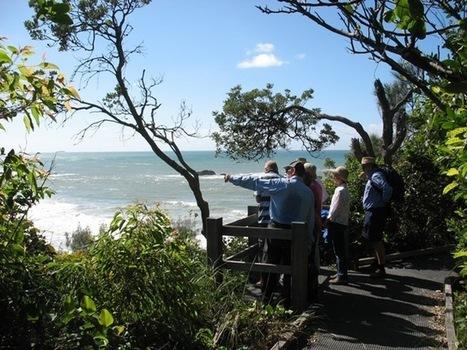 Northern Beaches aspect a new highlight of Walk the Coast - Coffs Coast Advocate | Dorrigo | Scoop.it
