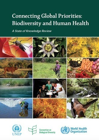 Connecting Global Priorities: Biodiversity and Human Health, a State of Knowledge Review | the Secretariat of the Convention on Biological Diversity | Development, agriculture, hunger, malnutrition | Scoop.it