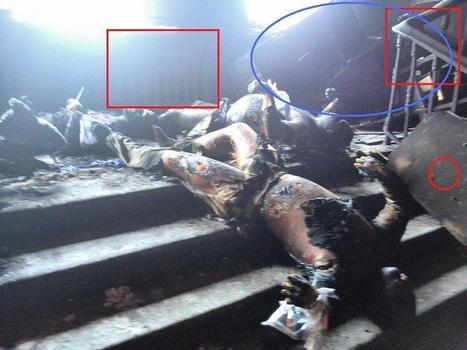 More than 160+ people were buried inside Odessa Labor House building.EXTREME VIDEO + PHOTO | Saif al Islam | Scoop.it