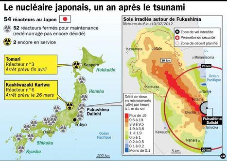 Fukushima : un an après le tsunami, tout danger n'est pas écarté | Japan Tsunami | Scoop.it