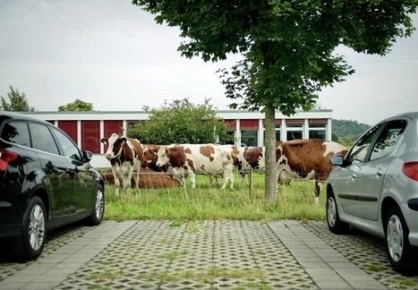 Parkplatz-Land Schweiz | Verkehr | Scoop.it