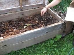 how to make a wormery   Lombrihumus de Pirineo   Scoop.it