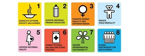 Outline of the Millennium Development Goals | Communication for Sustainable Social Change | Scoop.it