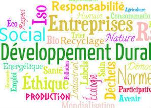 Sondage : RSE : les salariés encouragent les entreprises à faire plus   Responsabilité Sociale de l'Entreprise - France   Scoop.it