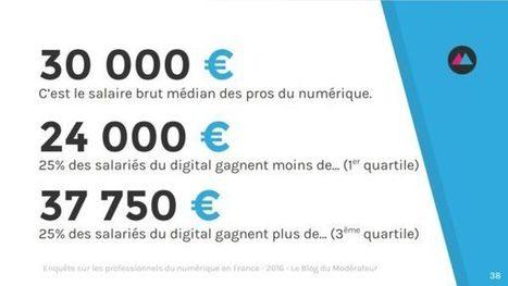 Enquête sur les professionnels du numérique en France - Édition 2016 | Connected Health & e-Pharma | Scoop.it