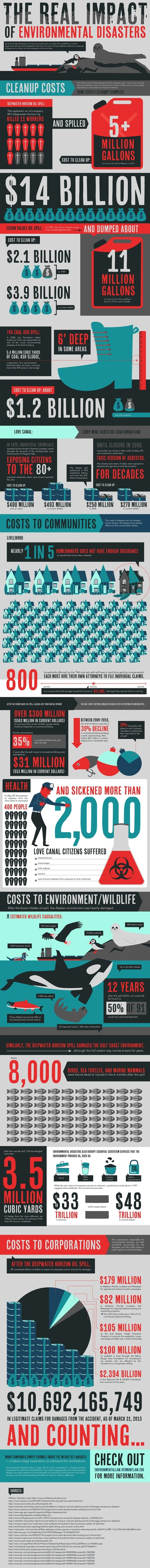 The Real Impact Of Environmental Disasters [Infographic] | ecosystem integration | Scoop.it
