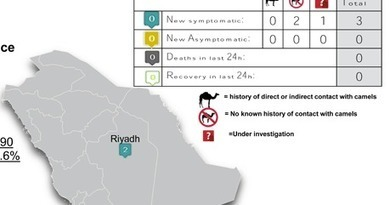 Avian Flu Diary: Saudi Arabia Announces 3 More MERS Cases | MERS-CoV | Scoop.it