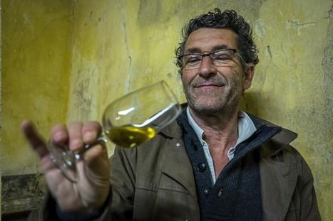 Jean-Yves Bardin fait la gueule des vignerons bordelais | Culture Vin | Scoop.it