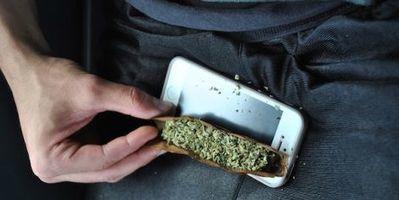Microsoft si lancia nel business della marijuana legale | Pillole di informazione digitale | Scoop.it