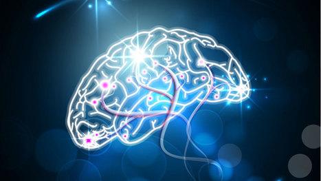 Utilising Consumer Psychology To Maximise Your Online Offering - Brand Quarterly | Consumer behavior | Scoop.it