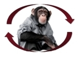 Monkey Management: Creating Empowerment and Growth – The Practical Leader | Global Leaders | Scoop.it