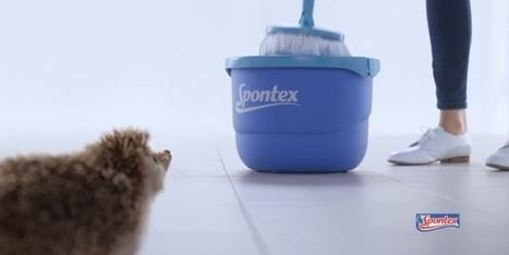 Spontex lance le compte Twitter le plus propre | Brand content & story telling | Scoop.it