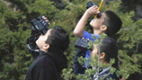 At an urban L.A. school, nature grows - and test scores too | The Global Village | Scoop.it