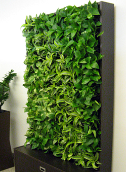 Smart Wall Cabinet » GSky Plant Systems, Inc. - | Vertical Farm - Food Factory | Scoop.it