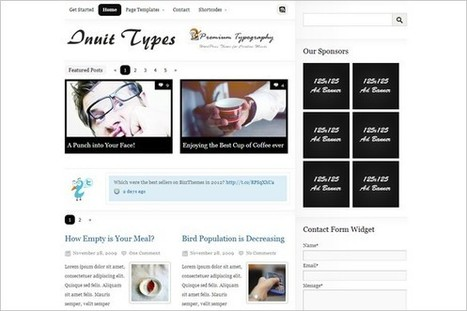 3 Top Selling WordPress Themes from BizzThemes | WP Daily Themes | Free & Premium WordPress Themes | Scoop.it