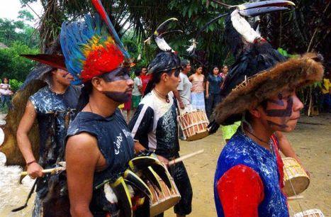 Censura a Ecuador por un contrato de extracción en tierra indígena   Indigenas en Ecuador   Scoop.it