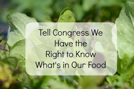 Tell Congress We Have the Right to Know What's in Our Food | Green & Eco-Friendly | Scoop.it