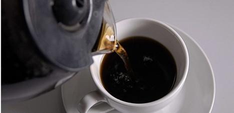 A-t-on découvert un gène de tolérance à la caféine ?   Sciences et techniques   Scoop.it
