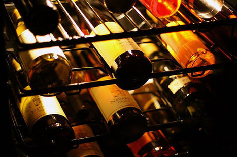 Cheers! The Wine Refrigerator Invades Your Kitchen | Renaissance Painters | Scoop.it