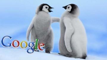 Matt Cutts sul Penguin Update | Social Media: tricks and platforms | Scoop.it