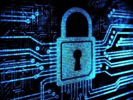 Cómo la NSA desactivó la criptografía en Internet (I) - Naukas | Activismo en la RED | Scoop.it