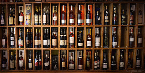15 Reasons Why Drinking Age Should Be 18 - Cognac.com | Lowering the drinking age to 18 | Scoop.it