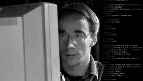 Linus Torvalds responds to Ars about diversity, niceness in open source | Semantic Gnosis Web | Scoop.it