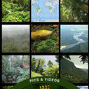 Rainforest from Britannica Kids | Educational Apps and Beyond | Scoop.it