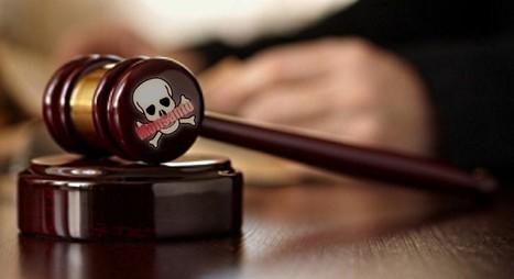 Monsanto en procès contre les agriculteurs bio | Questions de développement ... | Scoop.it