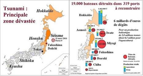 Japon / Tsunami : Comment reconstruire le secteur de la pêche sur 6 milliards d'euros de débris ? | Regard sur la Pêche et l'Aquaculture | Japon : séisme, tsunami & conséquences | Scoop.it