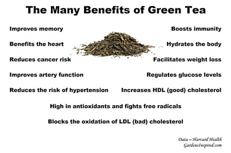 The many benefits of green tea | Better Health | Scoop.it
