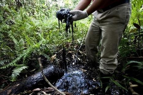 Ecuador Activist Accuses Chevron of ''Harassment and Defamation'' | Global politics | Scoop.it