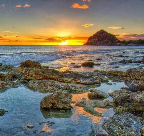Tweet from @AlohaArleen | http:www.scoop.it-t-Oahu | Scoop.it