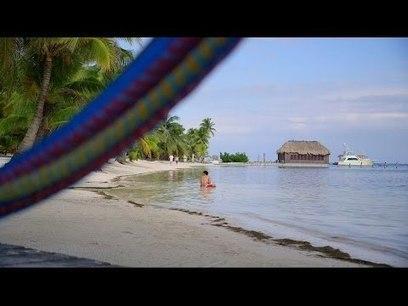 Our Favorite Cruise Excursions: Airboat Adventure & Belize City Tour   Belize   Scoop.it