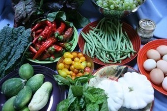 Find thriving farmers' markets in every corner of New Mexico - ABQ Journal | what to do in New Mexico | Scoop.it