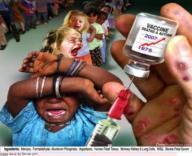 Le mythe vaccinal expliqueé aux nuls:   Vaccination mensonges & propagande   Scoop.it