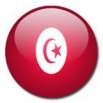 Tunisie : une statue à la mémoire de Chokri Belaïd vandalisée | Actualités Afrique | Scoop.it