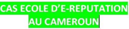 E-REPUTATION AU CAMEROUN | Veille | Scoop.it