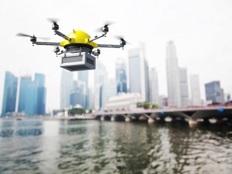 Les Américains peuvent désormais protéger leur résidence contre les intrusions de drones   L'Atelier : Accelerating Business   How digital builds our future   Scoop.it