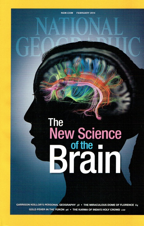 The New Science of the Brain | GESTION COGNITIVE | Scoop.it