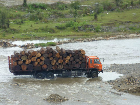 Myanmar's forests face myriad problems as logging ban continues | Sustain Our Earth | Scoop.it