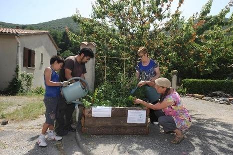 EN IMAGES. Des légumes gratuits et en libre service dans le Gard | Alimentation agriculture | Scoop.it
