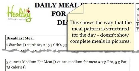 Renal Diabetic Diet Meal Plan - Renal Diet Menu Headquarters   Renal Diet Meal and Menu Plan   Scoop.it